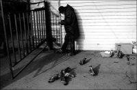 Шестизарядник Ужастный, 12 ноября 1980, Харьков, id72193156